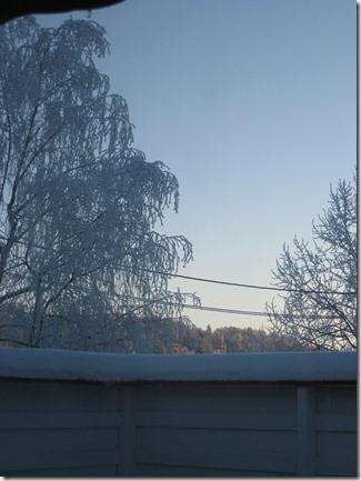 vinter jan 2011 002