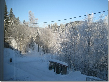 vinter jan 2011 004